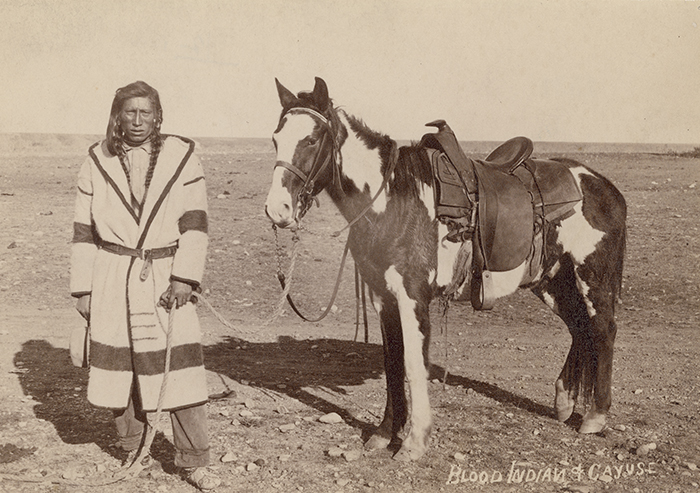 Kainah Man With Horse Blood 1882 Daniel Cadzow National Museum Of The American Indian P1531 Upper Missouri Saddle Blanket