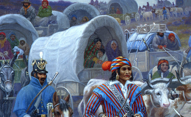 Removal of the Cherokee Nation | Interactive Case Study