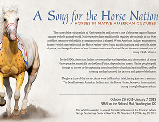 homepage of website includes horse illustration