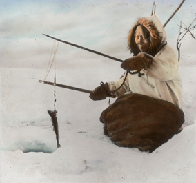 Woman jigging for tomcod