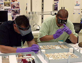 Mike Marshall and Steve Tamayo examine a set of Apache playing cards