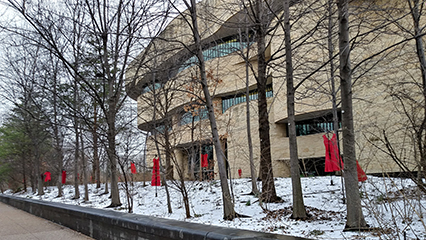 Image result for red dress project nmai