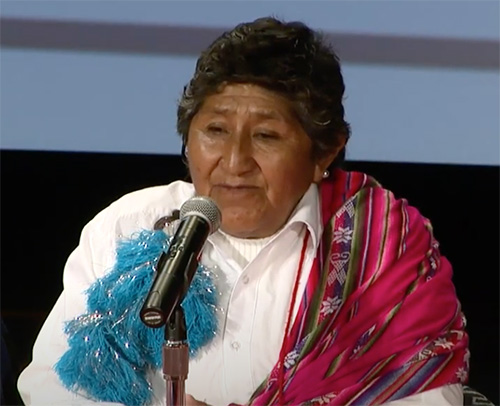 Native Chilean Women: Challenges and Opportunities
