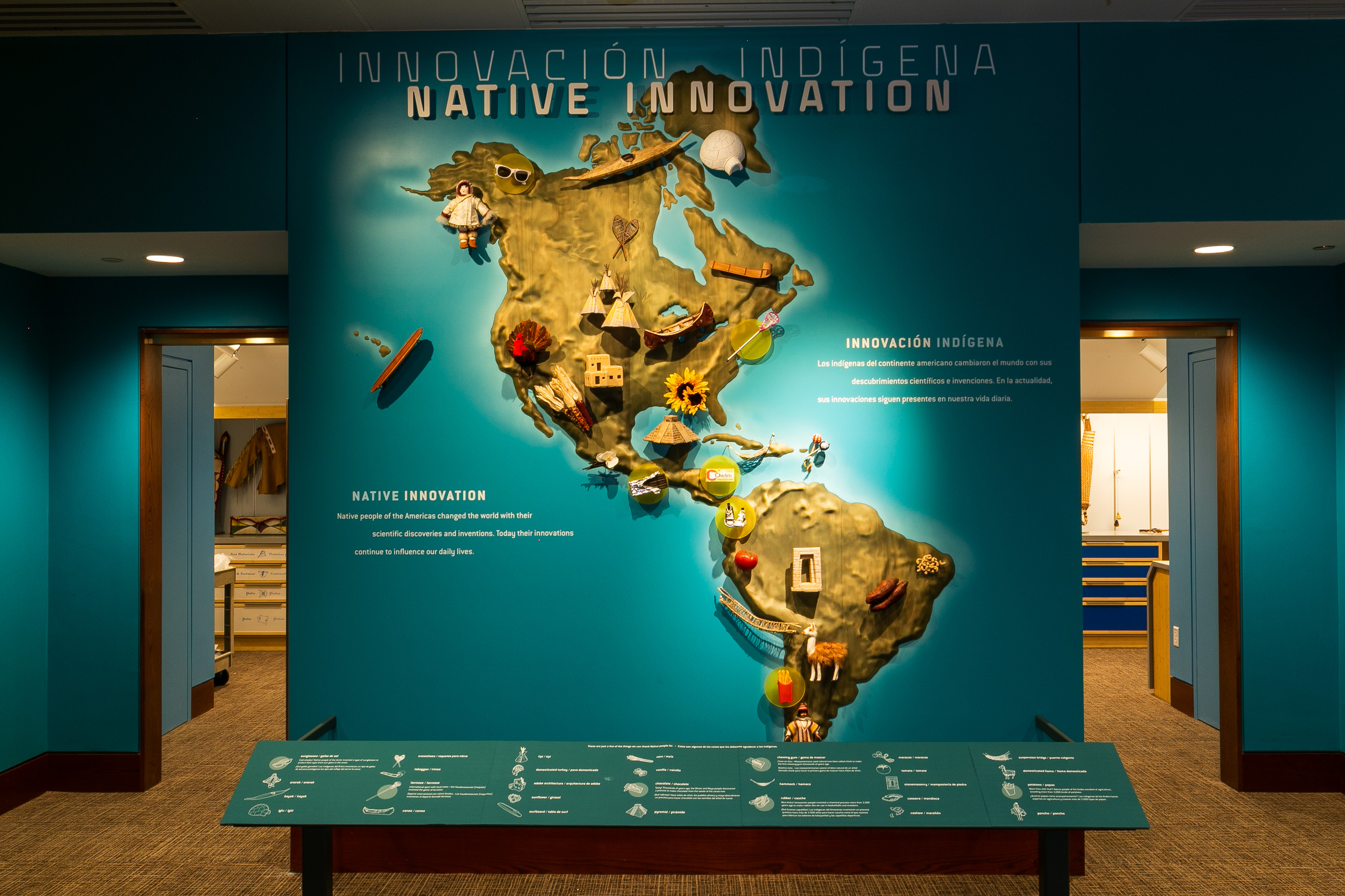 Native Innovations display, NYC imagINATIONS
