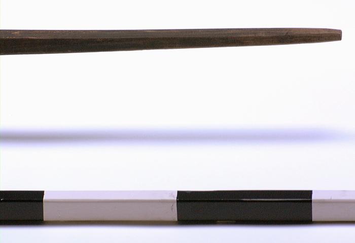 Seal harpoon